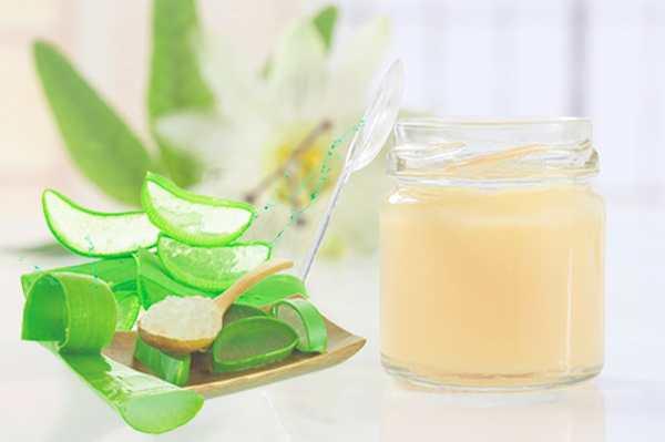 mặt nạ sữa ong chúa trị mụn với nha đam